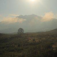 Утро в долине Кюг. :: Владилен Панченко
