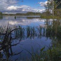 Озеро  Вышманово. :: Александр Ковальчук