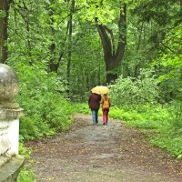 Дождь не помеха,когда хорошо вместе :: Лидия (naum.lidiya)