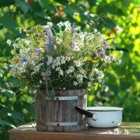 Цветы  полевые :: Наталья Казанцева