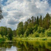 Речка Valgejogi Эстония :: Priv Arter