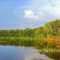 Река Самара :: Денис Кораблёв