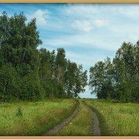 В лесу :: Владимир Савельев