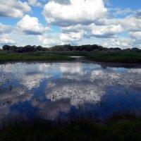 Облака смотрятся в озеро :: Николай Туркин