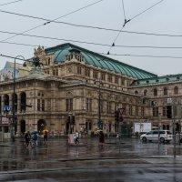 Венская опера :: Вадим *