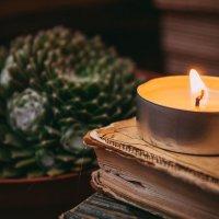 Свечи и растения-мой рай :: Алиса Добровольская