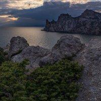 Крым-Новый Свет. :: Александр Хорошилов