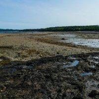 Отлив. На машинах до острова по океанскому дну! Залив Fundy (Канада, рядом со штатом Мэн, США) :: Юрий Поляков