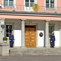 Охрана у входа в Президентский дворец. :: Олег Попков