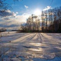 Весенний свет :: serka