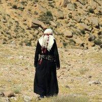 Бедуины не любят фотографироваться. :: Наталья Лебедева