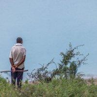Одинокий пастух :: Фазлиддин Инагамов