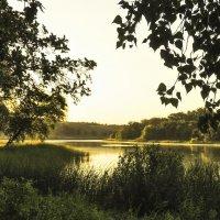 рассвет на озере :: татьяна