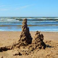 башни на песке :: linnud
