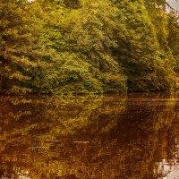 Закат на озере :: Татьяна Каримова