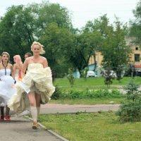 Сбежавшие невесты :: Albina