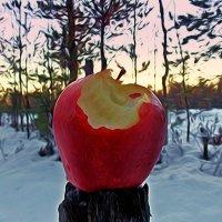Эх, яблочко.   Авторы  Саша и Натан. Аэрография :: Фотогруппа Весна.