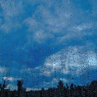 летний дождь. :: Настёна .