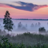 Вечерний туман :: Павел Кочетов