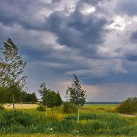 Ветрено... :: Валера39 Василевский.