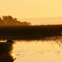 Раннее утро на озере :: Наталия П