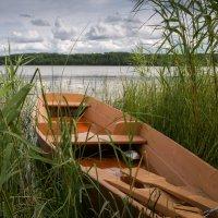 На озере :: Сергей Григорьев