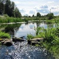 Тихая река :: OLLES