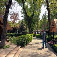 Скверы Еревана :: Лидия кутузова
