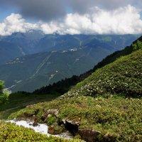 Июль в горах... :: Виолетта