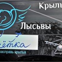 Авиафестиваль :: Aquarius - Сергей