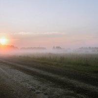 Утро, туман, восход. :: cfysx