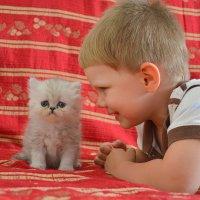 Котенок и малыш. :: Оля Богданович