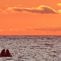 Уплывали рыбаки за далёкие буйки :: Владимир Гилясев