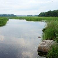 Выборгский залив Балтийского моря :: Елена Павлова (Смолова)