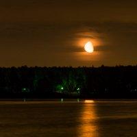 Лунная дорожка.... :: Наталия Горюнова