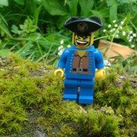 Пират. Лего. :: Ирина Белорусочка