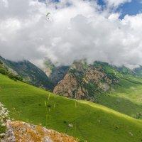 От букета до облаков :: Юрий Шевченко