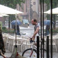 Июльский дождь :: Elen Dol