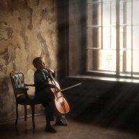 Наедине с музыкой :: Elena Fokina