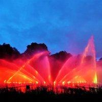 Когда поют фонтаны... Вечерний Гамбург (серия) :: Nina Yudicheva