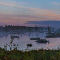 Белые туманные ночи :: Альберт Беляев