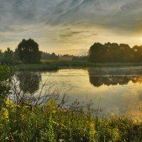 Июльское утро :: sergej-smv