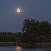 Лунная дорожка. :: Андрий Майковский