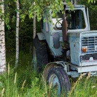 Добрый трактор Митя :: Андрей Батранин