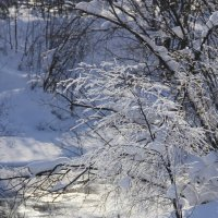 Зима :: Александр Широнин