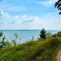 Зелень и вода что ещё нужно для счастья :: Света Кондрашова