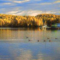 Осенняя прогулка :: vladimir