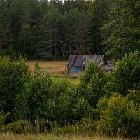 Домик в деревне :: Alexander Petrukhin