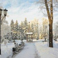Пушкинский парк :: юрий Амосов