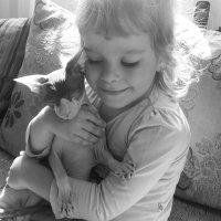 кошачьи нежности :: Алёна Крайко